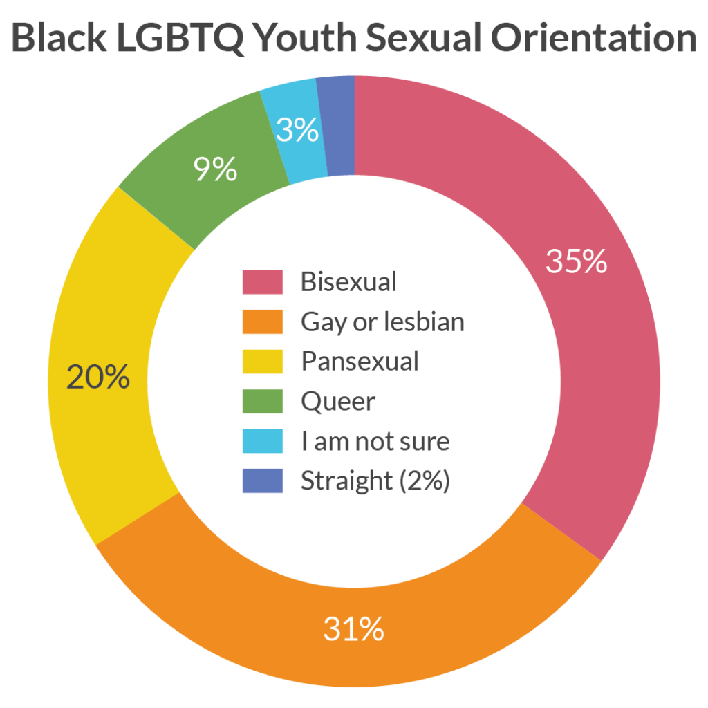 Black LGBT Youth Sexual Orientation Chart