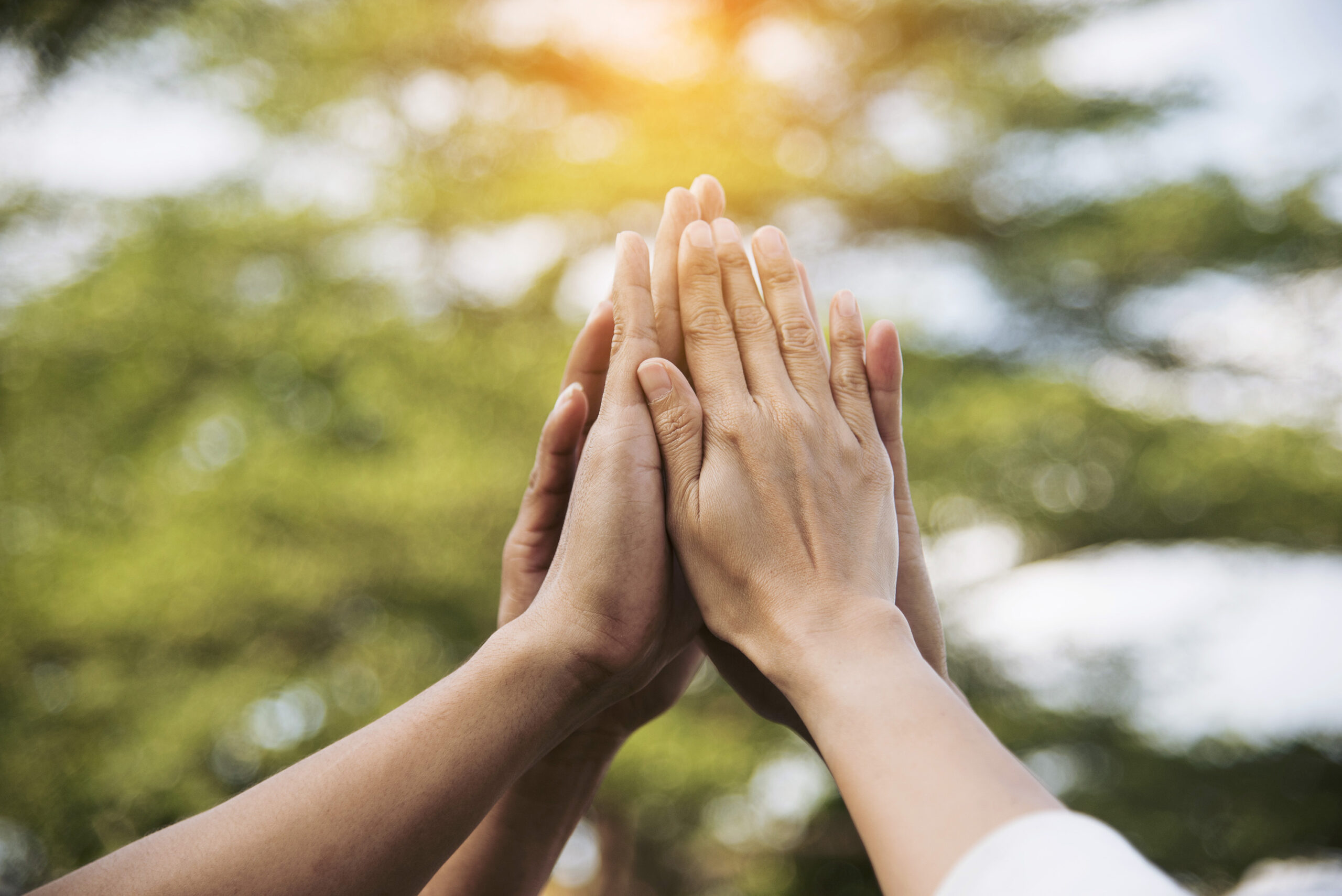 A close up of hands in a group high-five.